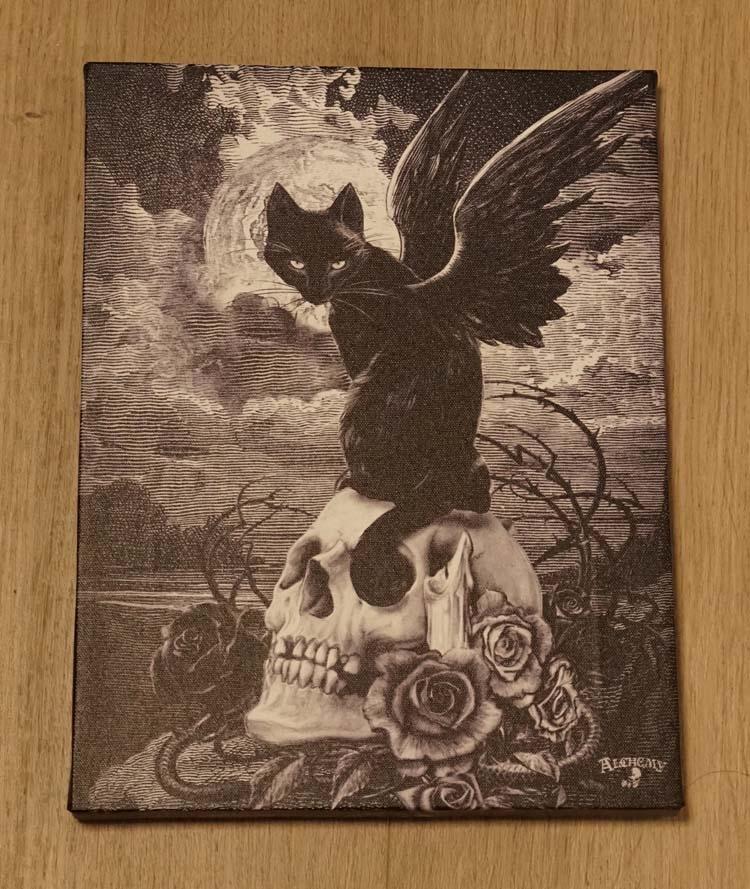 """Anne Stokes wanddecoratie  """" Kat met vleugels op doodskop """""""