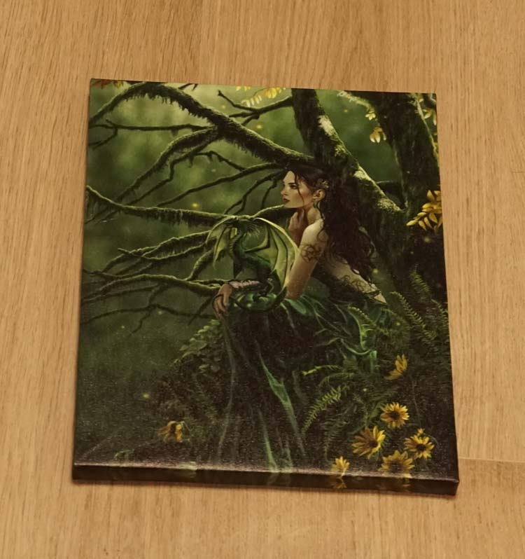 """Anne Stokes wanddecoratie  """" Vrouw in bos """""""